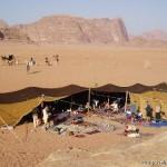 27497-beduoin-camp-wadi-rum-jordan